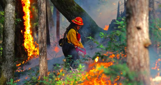 Karuk Scientist Talks to NPR About How Indigenous Burning Methods Could Help Prevent Massive Wildfires