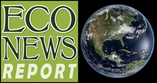 THE ECONEWS REPORT: Round-up Show! Billboards, Birdwatching and the Trump Administration's Attack on Federal Environmental Laws