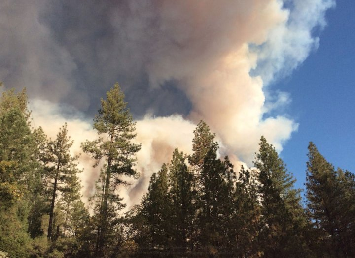 Everything destroyed as wildfire scorches Paradise, California