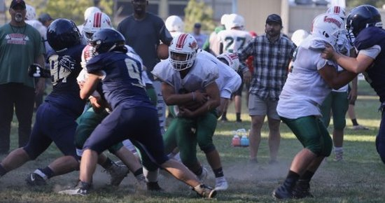 Loggers to Run the Ball by Committee
