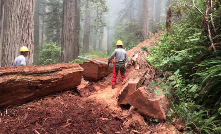 Long-Closed Section of California Coast Trail Reopens This ...