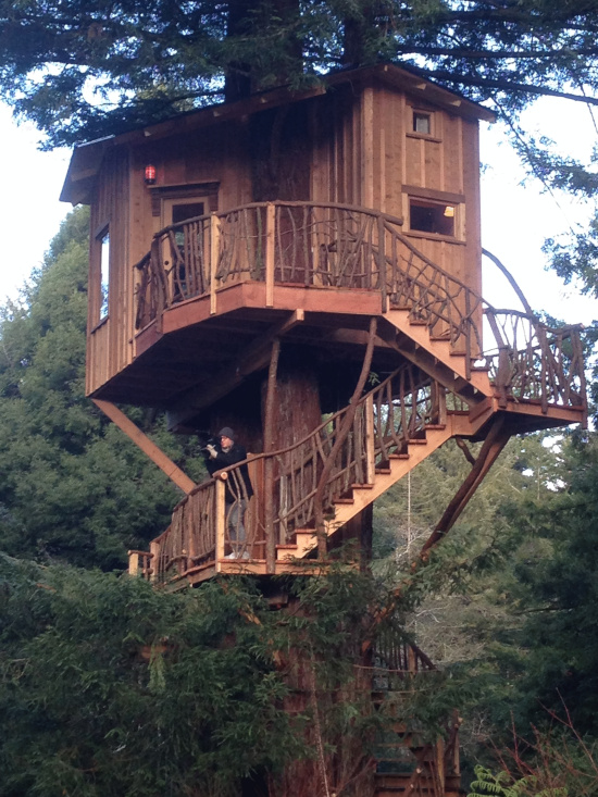 Look At This Treehouse