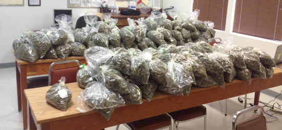 Over 100 Turkey Bags Full Of Pot Fail To Make Their