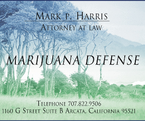 Mark Harris, Attorney at Law