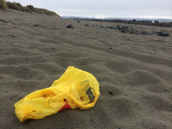 Humboldt County Beaches, Now With Less Trash