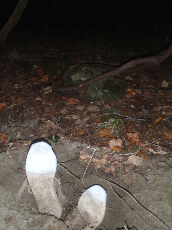 Unidentified Bodies in Mendocino Not Much South of the